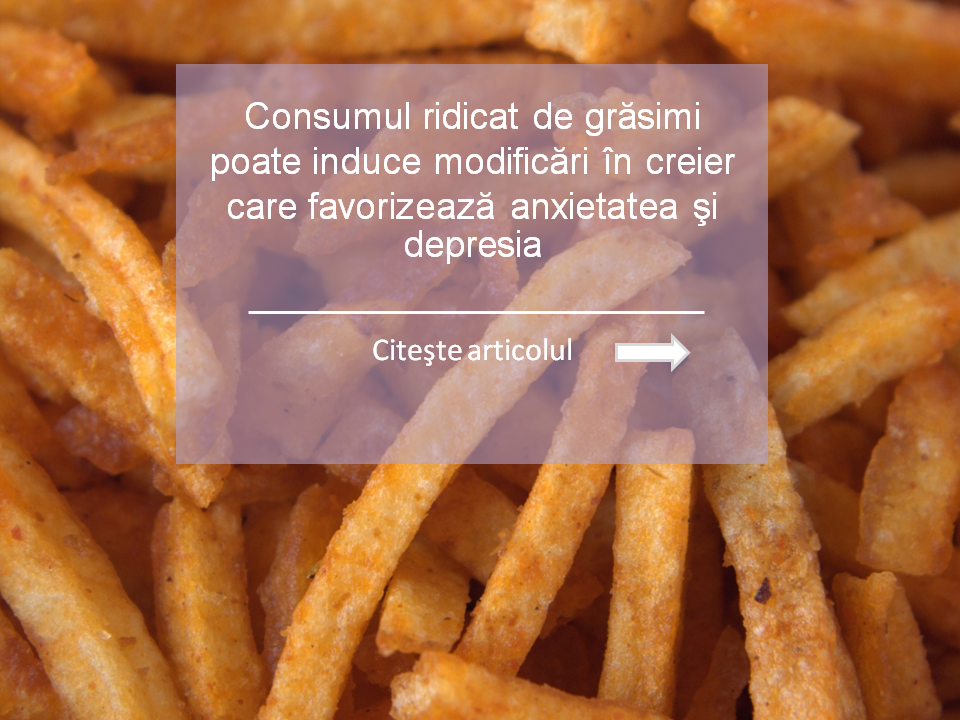consumul de grasimi produce modificari in creier